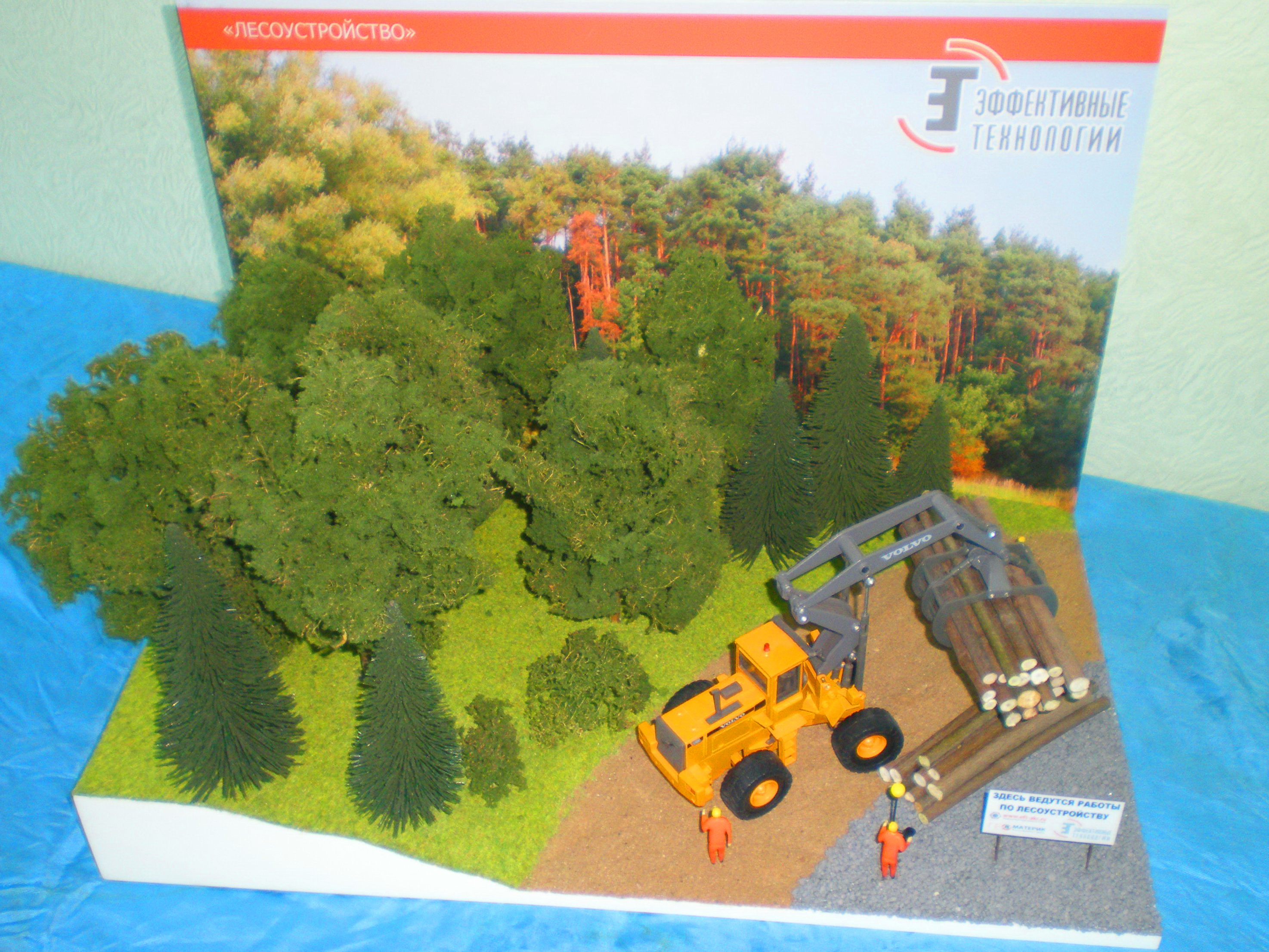 Waldbewirtschaftung funktioniert